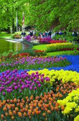 Jardines De Keukenho